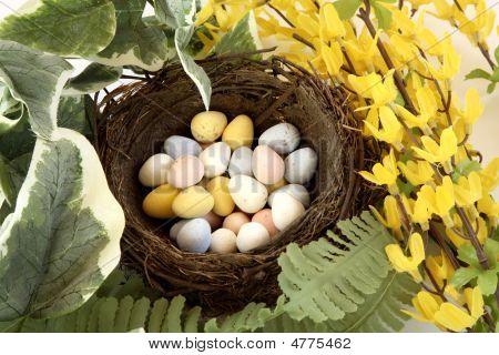 Birds Nest Of Sugar Coated Realistic Chocolate Eggs