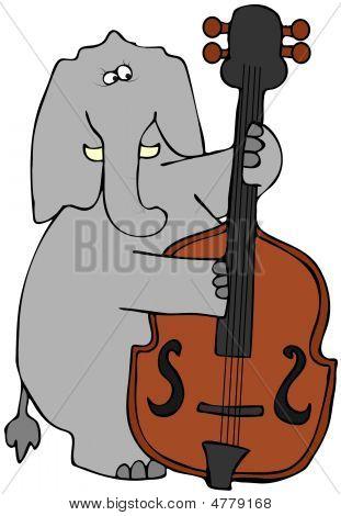 Elephant Playing Bass Fiddle