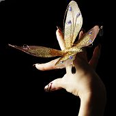 Manicure and pretty butterfly over black background poster