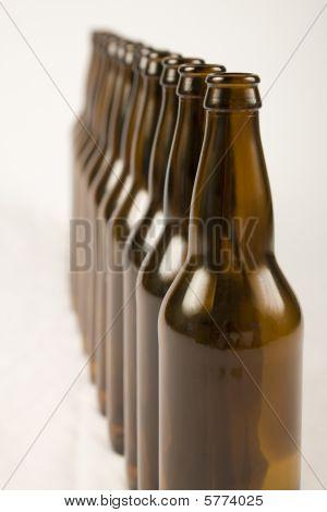 Bottles In Line