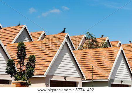 Condomimium House Rooftops.