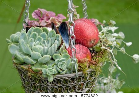 Autumnal Decorational Hanging Basket