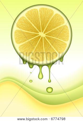 Orange Lemon Concept. VECTOR IMAGE