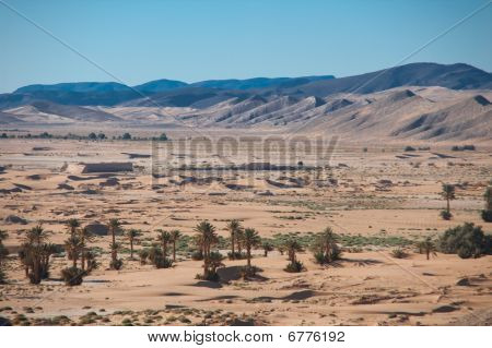 Desert on a heet of late afternoon sun poster