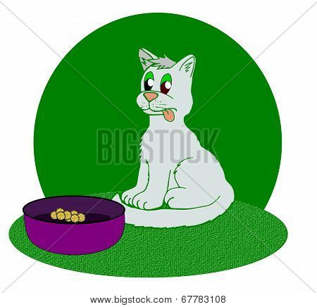 Funny cat looking at a bowl with scarce of food. poster