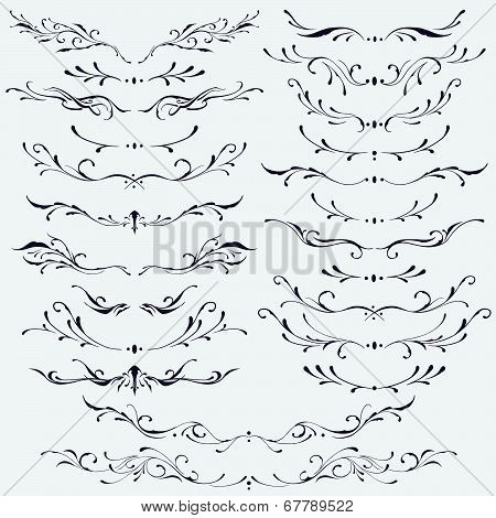 Floral divider and borders elements vector for Use poster