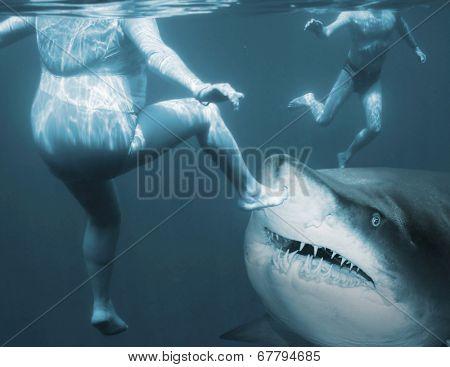 Shark attack. Life insurance concept.