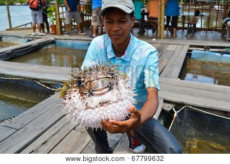 A Man Was Showing His Puffer Fish
