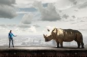 Young woman in casual holding rhino on lead poster