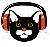 black cat in the music headphones - illustration poster