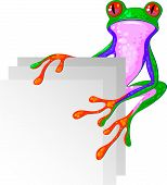 Tree Frog for the corner. Isolated. EPS 8 poster