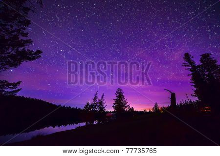 Purple Stary Night Sky Over Forest And Lake