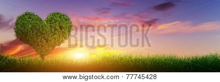 Heart shape tree on green grass field landscape at sunset. Panorama, banner. Love symbol, concept for Valentine's Day, wedding etc.