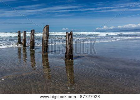 Marching Pier Logs