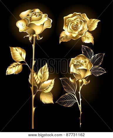 Set Of Golden Roses
