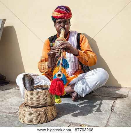Rajasthani Man With Cobra