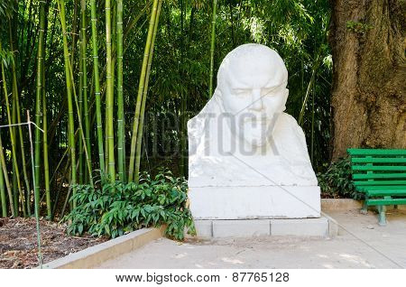 Monument To Lenin In The Nikitsky Botanical Garden.
