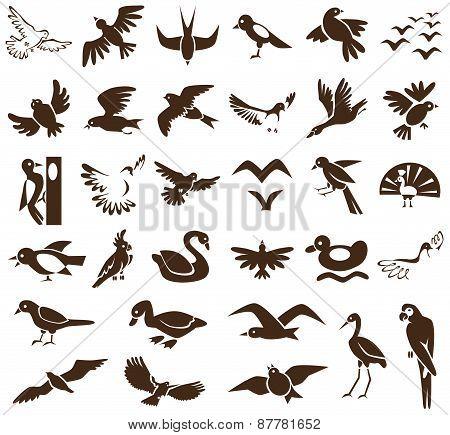Birds Icons On White