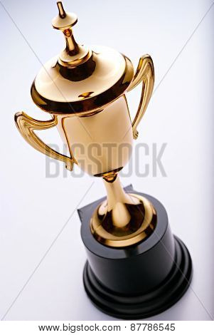 Gold Trophy For The Champion