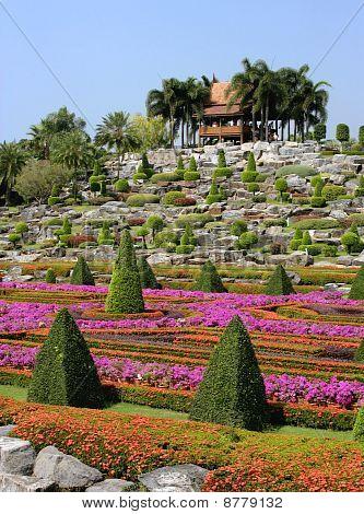Nongnooch Tropical Botanical Garden, Pattaya