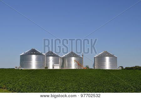 Steel grain bins in bean field