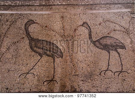 Ancient Mosaic. Church Of The Multiplication Of The Loaves And The Fishes, Tabgha