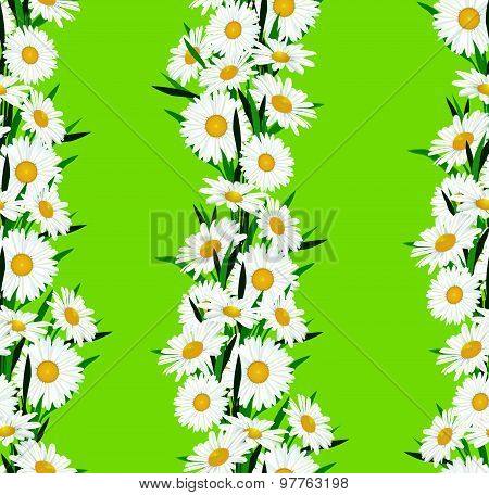 Floral seamless pattern. Flower chamomile bouquet background. Floral seamless ornament with flowers. Flourish posy decor