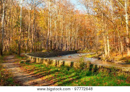 Late Autumn Creek