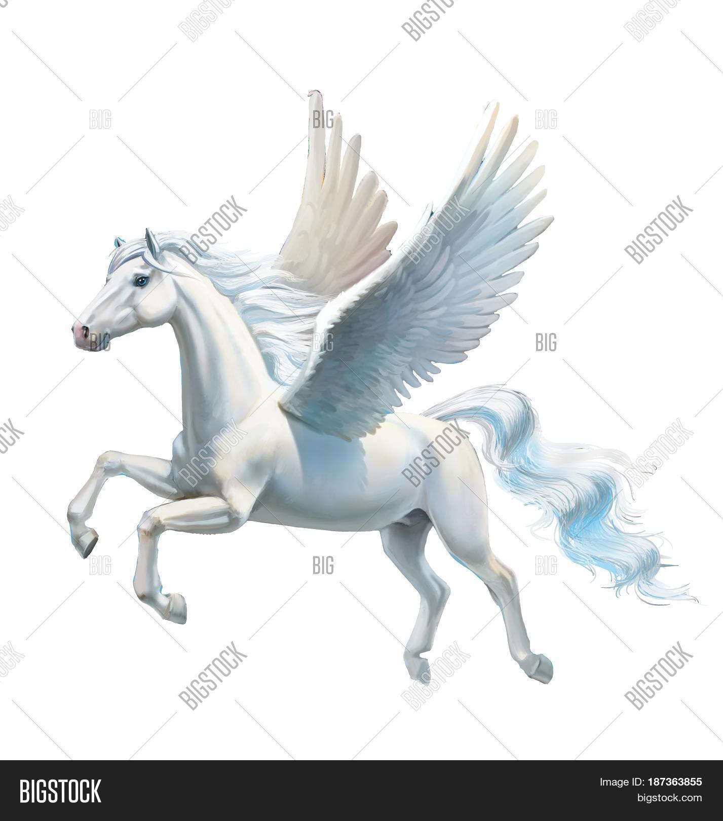 Imagen Y Foto Pegasus White Prueba Gratis Bigstock