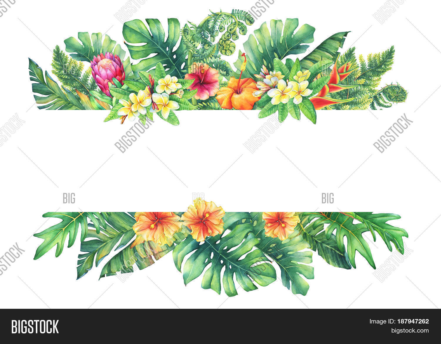 Banner Branches Purple Image Photo Free Trial Bigstock