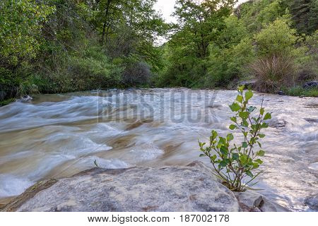 French countryside. Wild river in the mountains of Vercors, Drome.