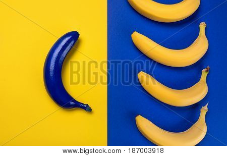 Top View Of Fresh Ripe Yellow Bananas And Blue One Isolated On Blue And Yellow