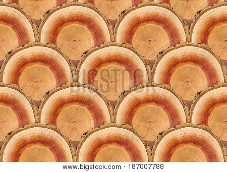 seamless pattern of many similar apricot tree woodcut pieces