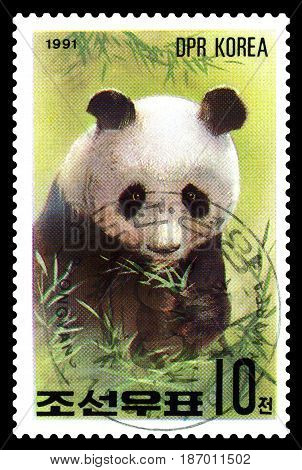 STAVROPOL RUSSIA - May 14 2017: A Stamp sheet printed in North Korea shows Giant Pandas series Pandas circa 1991