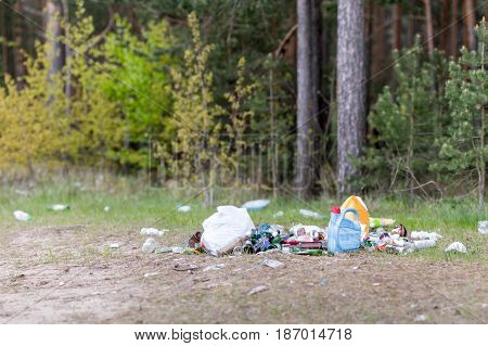 Garbage dump in the woods- environment pollution.