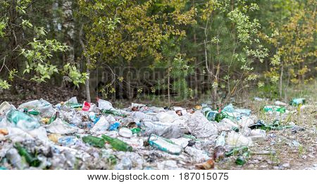 Garbage dump in the woods. Environmental problem