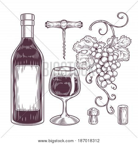 collection of wine icons - bottle, glass, bunch of grapes, corkscrew, cork. Engraving style