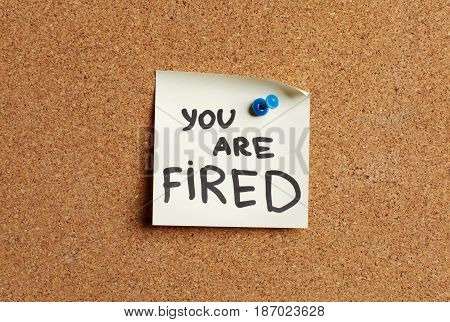 Bulletin board cork board you are fired note pinned bulletin pinboard