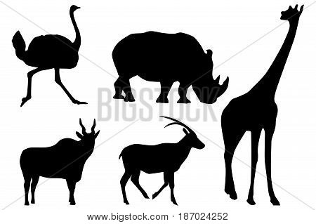 Silhouettes of animals. giraffe, rhino, ostrich, goat. Vector illustration isolated on white background