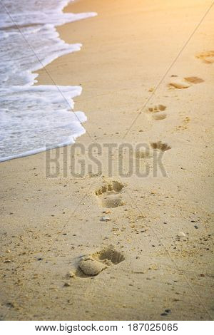 Footsteps of a child who walks on the beach by the sea