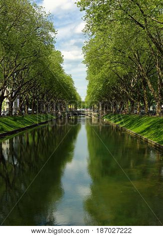 Vertical View Of Summer Bright Historic Trade Avenue Koenigsallee (king's Avenue) Germany With Canal