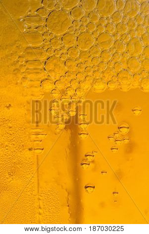 Beer close-up drink alcohol carbonation carbonated condensation