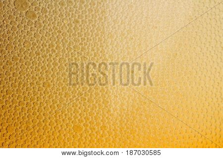 Beer alcohol carbonation carbonated close-up condensation drink