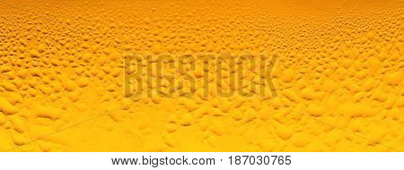 Beer alcohol close-up carbonation carbonated drink condensation