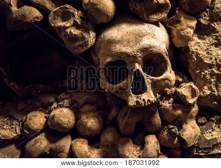 Highly detailed image of skulls and bones in Paris Catacombs