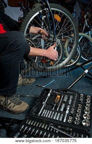 Master Bike Repairs In The Workshop