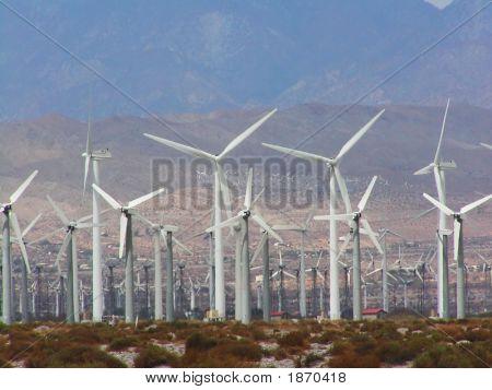 Abundance Of Wind Turbines