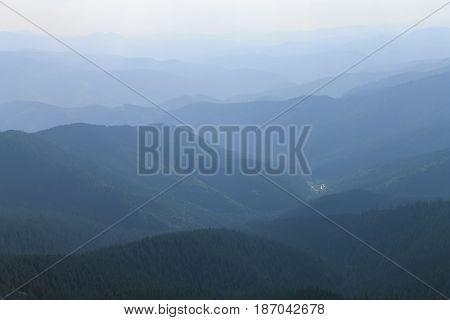 Mountain coniferous forest. Tonal perspective. Carpathians. Ukraine.