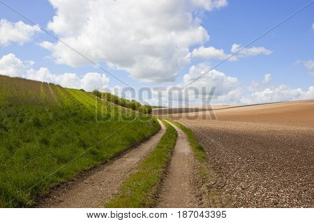 Chalky Soil And Farm Track