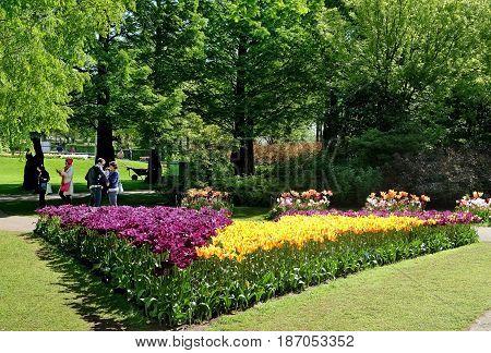KEUKENHOF HOLLAND - MAY 14 2017: Flowerbed of tulips in the Royal Keukenhof Park